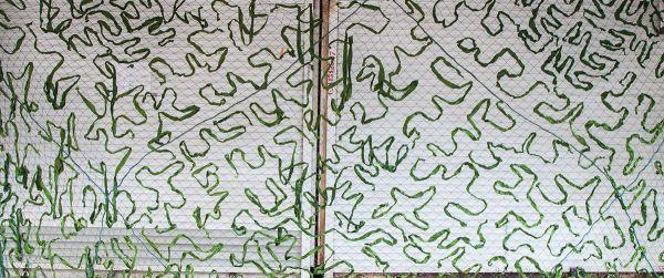 Сетка-маскировка зеленая 40% затемнения 2,7х5,5